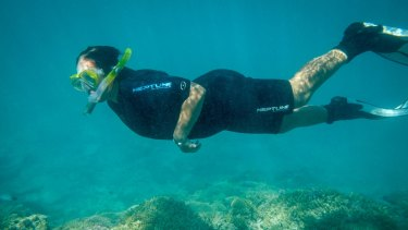 Coral bleaching is a serious threat to the whole Great Barrier Reef and the tourism industry.