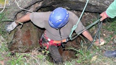 Manfred Zabinskas helped rescue the kangaroos.