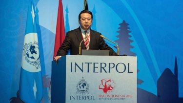 China's Vice Minister of Public Security Meng Hongwei speaks at Interpol's general assembly in Bali on Thursday.