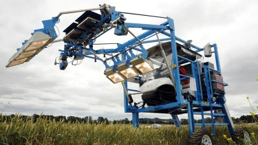 The phenomobile: a high tech buggy designed and built by the Australian Plant Phenomics Facility in Canberra which uses lasers, thermal imaging and light reflected from the crop to rapidly measure growth, photosynthesis and stress responses of wheat in the field.