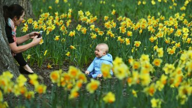 Katharine Squires with her 9-month-old son William enjoy the last day of winter in the Fitzroy Gardens.
