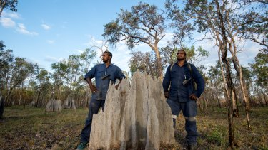 Olkola land managers brothers Glen Kulka (left) and Hamish Kulka (right) among termite mounds at Killarney.