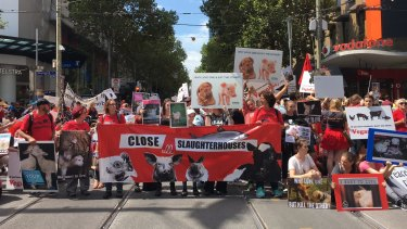 About 600 people walked through the city demanding the closure of Australian abattoirs.