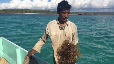 A seaweed farmer from the Indonesian island of Rote, where locals say their fish stocks and seaweed crops were devastated after the 2009 Montara oil spill in the Timor Sea.