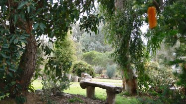 View of Eremaea, from <i>The Australian Native Garden</i>.