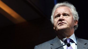 """GE goss Jeff Immelt said after the """"disappointing decision"""" that """"industry must now lead and not depend on government."""""""