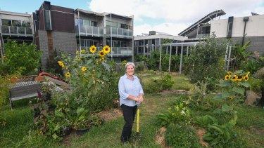 Murundaka resident Kaz Phillips says the ability to take a long-term view is one of the great benefits of gardening in a co-housing arrangement.