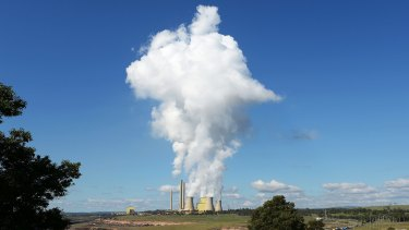 AGL Energy's brown coal fired power station in Victoria is one of the nation's biggest emitters of carbon dioxide.