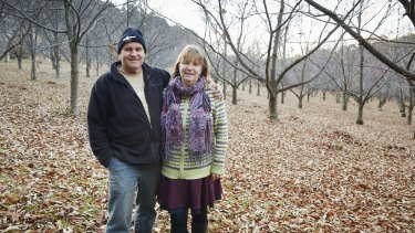 David and Helen McIntyre in their chestnut orchard.