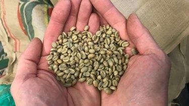 Around 250 kilograms of coffee beans are roasted each week.