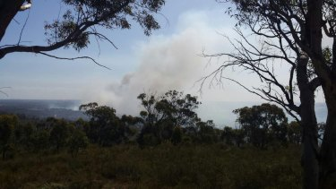 The report has emerged just a day after a bushfire endangered lives and consumed buildings in Wattle Grove and Kenwick.