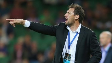 Possible move: Wanderers coach Tony Popovic may be going to Selhurst Park.