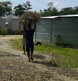 Men inside the now-closed Manus Island regional processing facility collecting firewood.