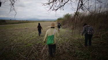 A group of relatives of missing people walk in a field in Iguala in May as they search in vain for a site of a possible clandestine grave after they received an anonymous tip.