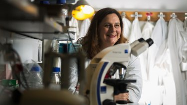 Associate Professor Helen Abud at Monash University.