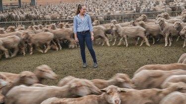 Katherine Bain wants to come home one day to run the family's merino sheep farm in Stockyard Hill near Ballarat.