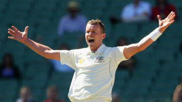 Back in town: Peter Siddle.