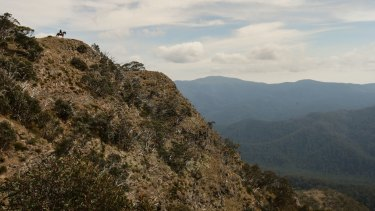The Victorian National Parks Association says the government is attempting to commercialise parks by stealth.