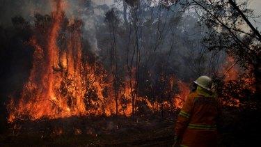 A bushfire is threatening homes in the Yangebup area.