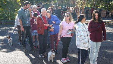 A long queue of voters at the East Gosford Public School in the electorate of Robertson in Gosford, Central Coast.
