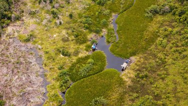 An aerial view of peat land forests cleared for fishing, inside APRIL's concession in Riau province.