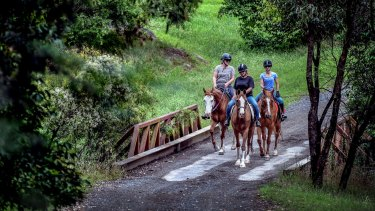 Appin residents Penny Dunbier, Lauren Kirszonka and Robyn Kirszonka walk their horses in the area this week.