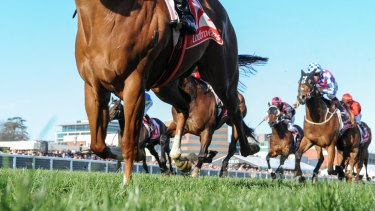 Tatts' and Tabcorp's merger talks come as the spring racing carnival gets under way.