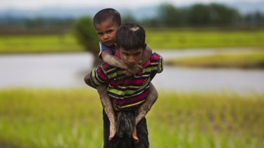A young Rohingya boy from Myanmar carries a child on his back through rice fields after crossing over to the Bangladesh on Friday.