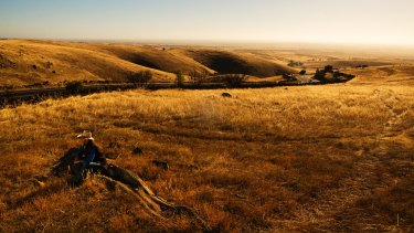 Australia says no to a Chinese-led group's bid for the iconic S. Kidman & Co cattle stations but yes to real estate.