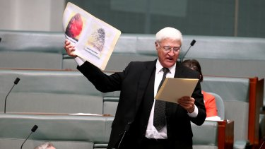 Independent MP Bob Katter in Parliament.