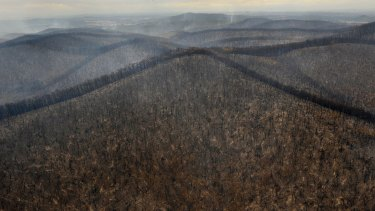Burnt out ranges just east of Kinglake after fires ripped through during Victoria's hottest day on record.