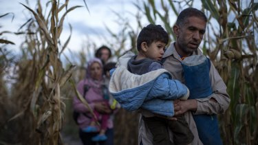 Refugees are smuggled through fields and forests in an attempt to evade the Hungarian police close to the Serbian border.
