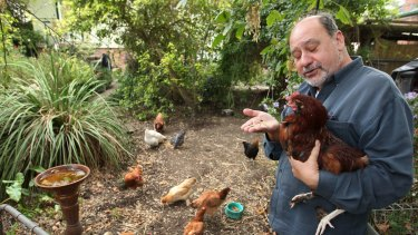 Campaigning to ban battery hens: New MP Mark Pearson.