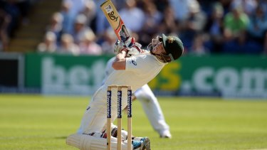 Chris Rogers fell five runs short of his hundred.