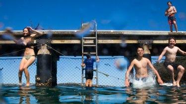 Children take the plunge at Chowder Bay.