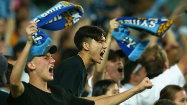 Something to shout about: Sydney FC fans celebrate a goal at Allianz.