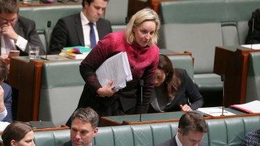 Alannah MacTiernan says she won't challenge WA Labor leader Mark McGowan.