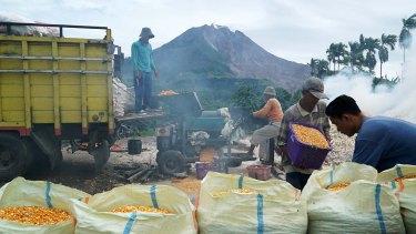 Farmers work at milling corn as Mt Sinabung spews hot smoke in Guru Kinayan village in  North Sumatra.