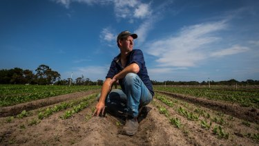 Wayne Shields runs Peninsula Fresh Organics market garden at Baxter.