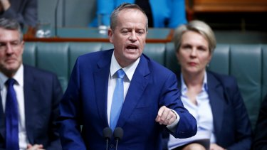 The more politics is failing, the more it seems like a good idea to have a popular vote on something. Take Bill Shorten's proposals of the past week.