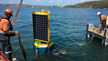 The  new Clever Buoy shark system issued two warnings on Satuday.