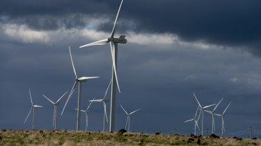 AGL's Macarthur wind farm in western Victoria.