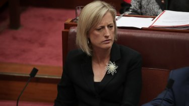 Katy Gallagher's dual citizenship case is currently before the High Court.