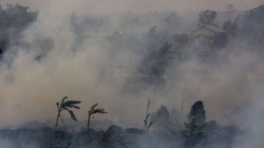 Thick smoke from a peatland fire in the Ogan Ilir district in Palembang, South Sumatra, earlier this month.