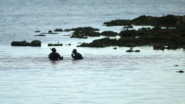 Police divers search for remains near where what is believed to be a skull was discovered on Tuesday.