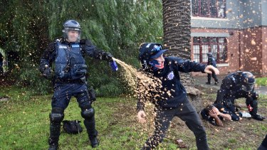 Police deploy capsicum spray against demonstrators.