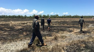 Rangers crossing some savannah land burned during the recent dry season in Arafura Swamp.