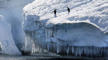 On the last census, at least a dozen Australians said they were born in the Antarctic.