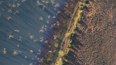 Aerial shot of Menindee Lake.
