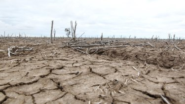 Drought conditions in the lower Murray-Darling Basin during the Millennial Drought